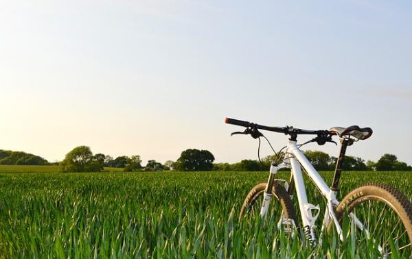 Cuáles son los beneficios de estar en contacto con la naturaleza - Actividades deportivas