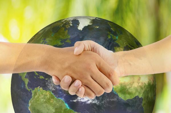 Protocolos ambientales: qué son y ejemplos - Qué son los protocolos ambientales