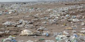 Deterioro ambiental: definición, causas y consecuencias