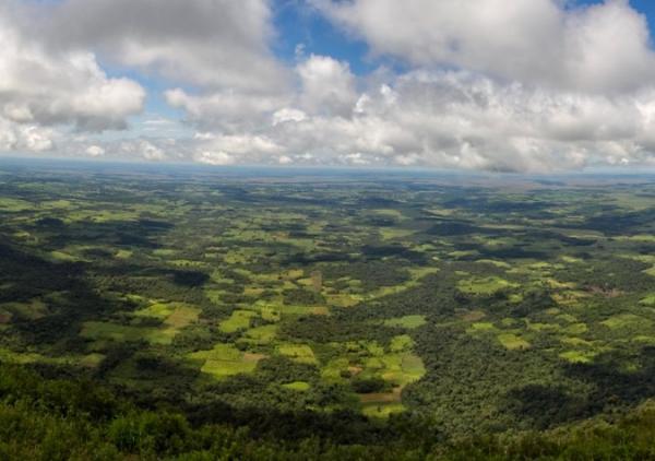 Regiones naturales del Paraguay - Región Oriental