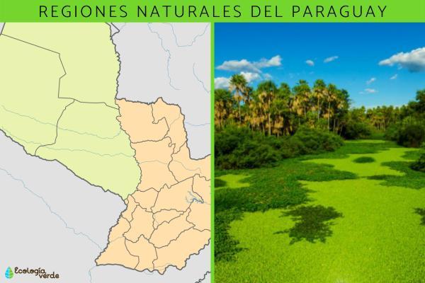 Regiones naturales del Paraguay