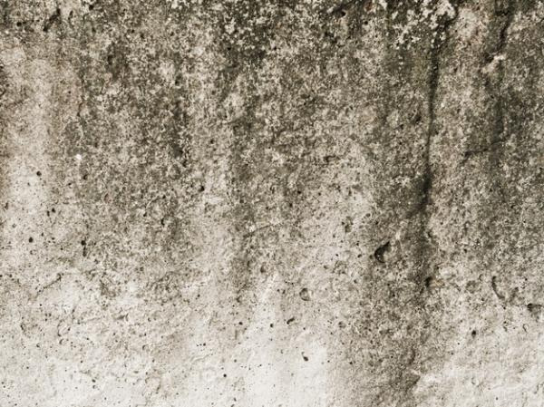 Solución eficaz en la eliminación de la humedad por el Dr. Juan Viñas e hija