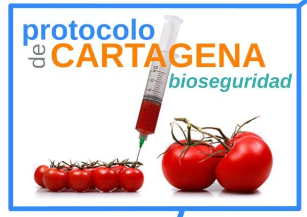 Protocolo de Cartagena: qué es, objetivo y países firmantes