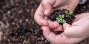 Conservación y protección del medio ambiente: importancia y medidas
