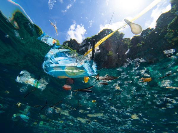 Causas y consecuencias de la contaminación del agua - Causas de la contaminación del agua: los contaminantes y las fuentes