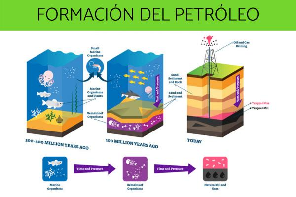 Cómo se forma el petróleo
