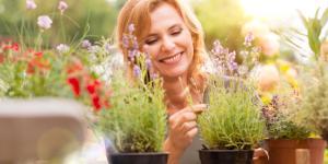 Cómo hacer crecer las plantas más rápido