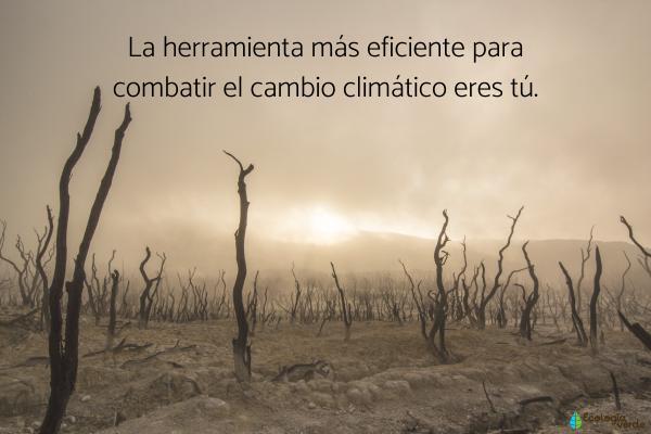 Frases del cambio climático - Frases del cambio climático cortas