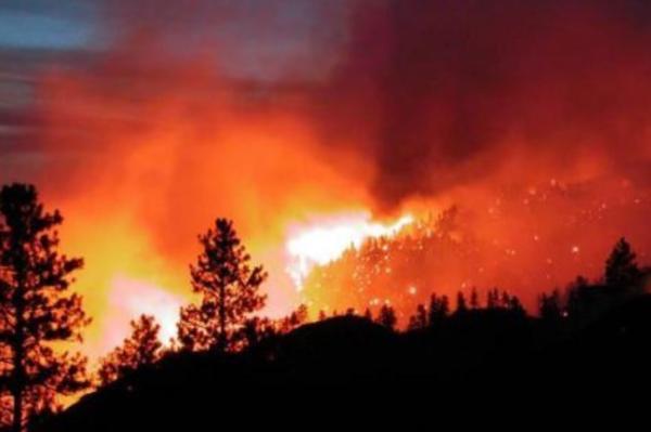 Consecuencias de un incendio forestal - Cómo prevenir un incendio forestal