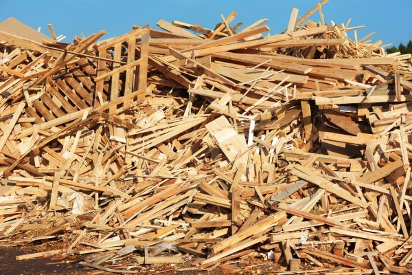 Cuánto tiempo tarda en degradarse la madera - Cuánto tarda en degradarse la madera
