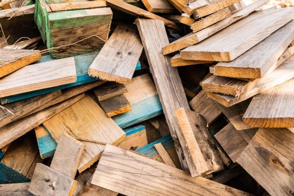 Cuánto tiempo tarda en degradarse la madera - Por qué es importante reciclar la madera