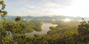 Qué es el clima tropical y sus características