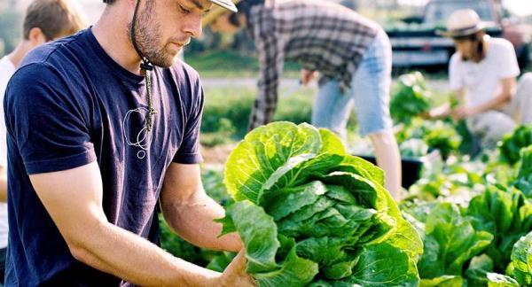 Beneficios de la comida ecológica - Ventajas para la salud