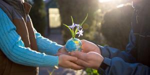 Cuál es la importancia de la educación ambiental