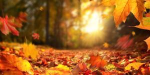 Equinoccio de otoño 2021: hemisferio norte y sur