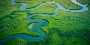 Qué es un afluente