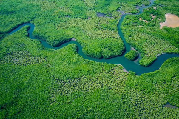Qué es un afluente - Qué son los afluentes y sus características