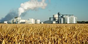 Qué son los biocombustibles, ventajas y desventajas