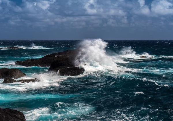 Océano Atlántico: características, flora y fauna - Características del Océano Atlántico