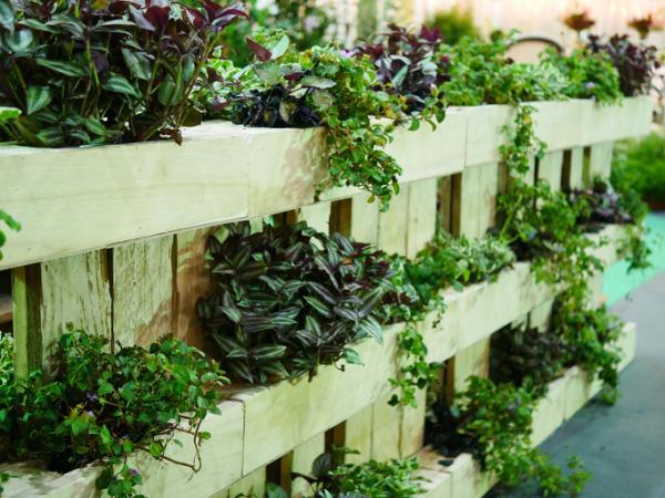 Cómo hacer jardines verticales - Cómo hacer un jardín vertical paso a paso
