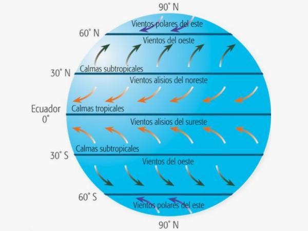 Vientos alisios: qué son y cómo se forman - Qué son los vientos alisios - definición e importancia
