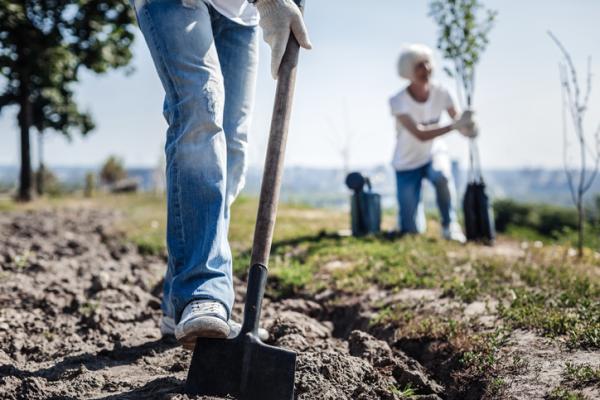 Conservación del suelo: importancia, técnicas y prácticas - Qué es la conservación del suelo