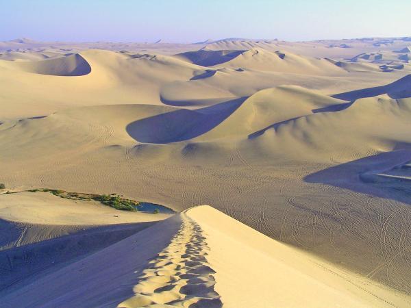 Las ecorregiones del Perú y sus características - Desierto del Pacífico