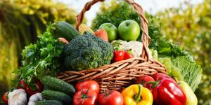 Diferencia entre orgánico, ecológico y biológico