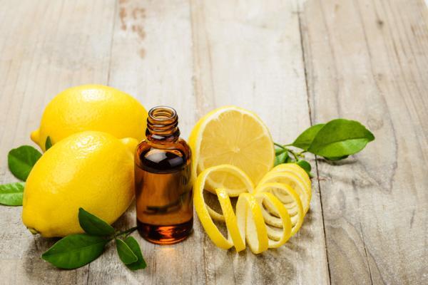 Cómo hacer ambientadores caseros - Cómo hacer un ambientador casero de limón