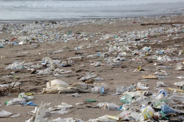 Alternativas para sustituir las bolsas de plástico - Impacto medioambiental de las bolsas de plástico