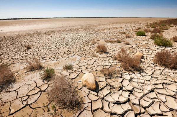 Problemas ambientales en el Ecuador - Desertificación