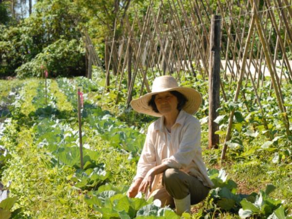Qué es permacultura: ventajas y desventajas - Principales ventajas de la permacultura