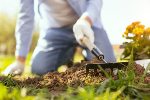 Qué es la horticultura - Qué es la horticultura – definición