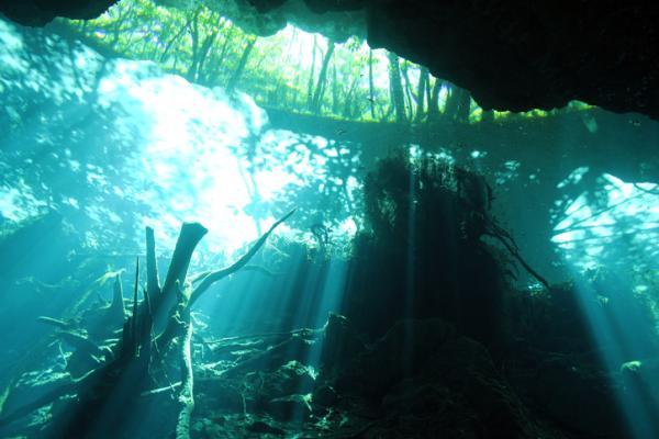 Qué es un cenote y cómo se forma - Qué hay en el fondo de un cenote