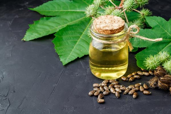 Aceite de ricino: propiedades y para qué sirve - Qué es el aceite de ricino
