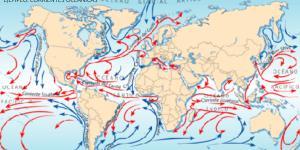 Distribución y dinámica de las aguas oceánicas