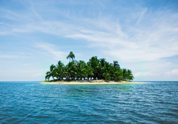 Tipos de biomas marinos - Biomas marinos de islas oceánicas