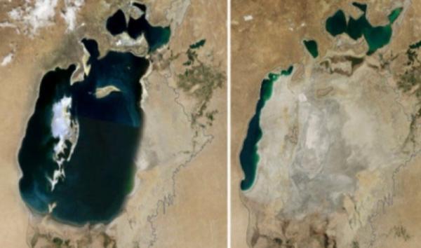 Destrucción del medio ambiente y el hábitat: causas y consecuencias - Ejemplos de la destrucción del medio ambiente y el hábitat - imágenes de antes y después