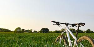 Ecoturismo: definición y características