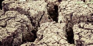 Qué es la degradación del suelo