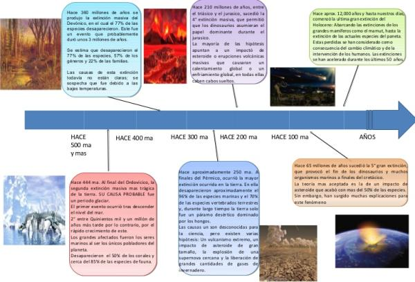 Extinciones masivas: qué son, causas y cuáles son - Cuáles son las extinciones masivas en la historia de la Tierra