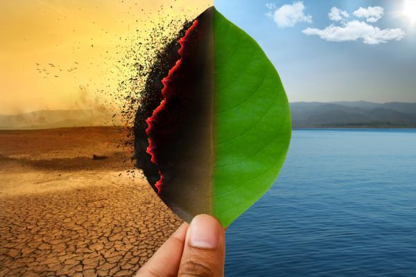 Cómo evitar el calentamiento global - Qué es el calentamiento global y sus causas