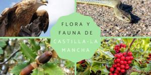 Flora y fauna de Castilla-La Mancha