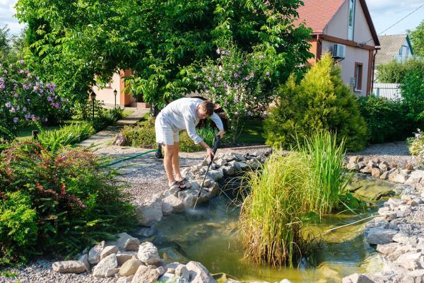 Cómo limpiar el agua verde de un estanque - Pon plantas que absorben los nutrientes del agua verde de un estanque