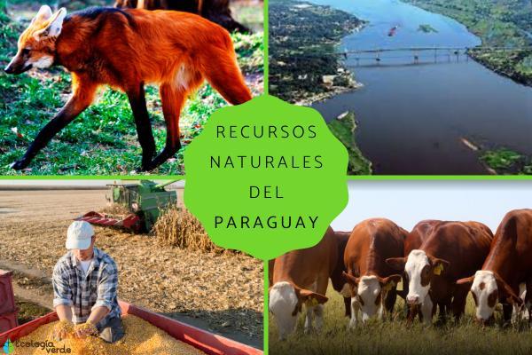 Recursos naturales del Paraguay