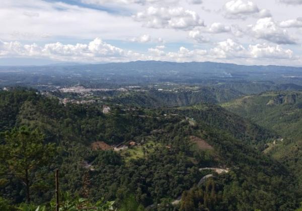 Biomas de Guatemala - Bosque de montaña