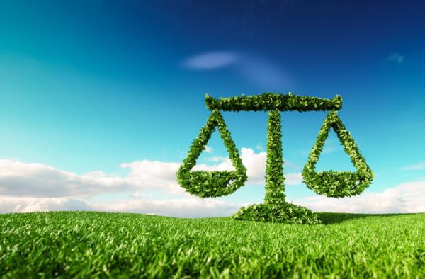 Desequilibrio ecológico: qué es, causas, consecuencias y ejemplos