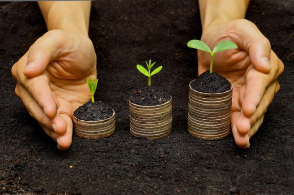 Capital natural: qué es y ejemplos - Qué es el capital natural de un país