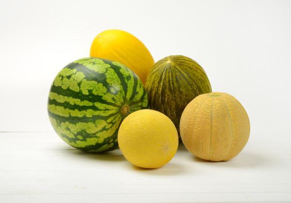 8 tipos de melones