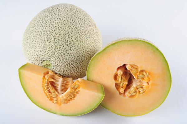 8 tipos de melones - Cantaloup